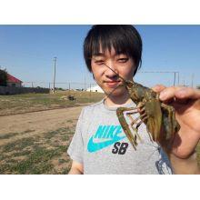 Keisuke先生【ロシア語 - 和歌山県】